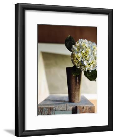 Hydrangea Rustic Vase