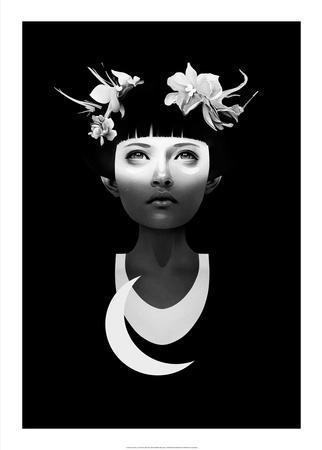 https://imgc.artprintimages.com/img/print/hyperdusk_u-l-f8vbhs0.jpg?p=0
