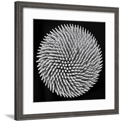 Hypnosis-Giorgio Toniolo-Framed Giclee Print