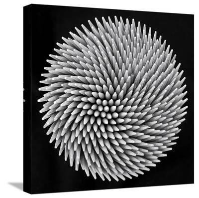 Hypnosis-Giorgio Toniolo-Stretched Canvas Print