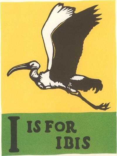 I is for Ibis--Art Print