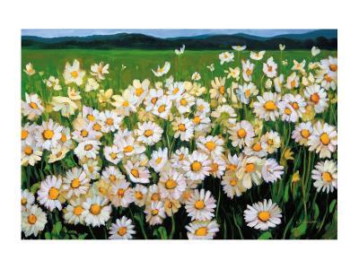 I Love Daisies-Liliane Fournier-Art Print