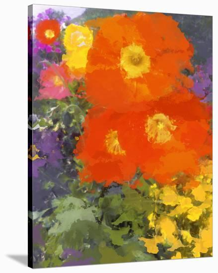 I Love Poppies I--Stretched Canvas Print