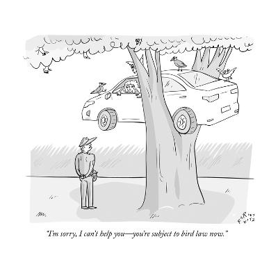 """""""I'm sorry, I can't help you?you're subject to bird law now."""" - New Yorker Cartoon--Premium Giclee Print"""