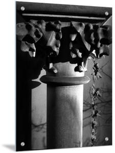 Column with Shadows by I.W.