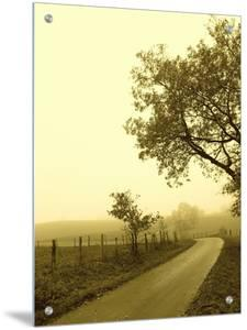 Countryside, Germany by I.W.