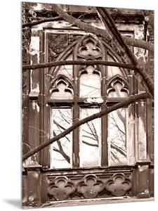 Exterior Window of Church and Tree Branch by I.W.