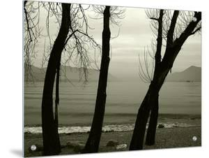 Misty Evening in Lago Maggiore, Italy, in Sepia by I.W.