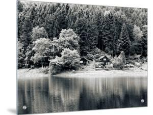 Rural Idyll Lake View Ringed by Evergreen Trees, Pastoral Lake Reflection by I.W.