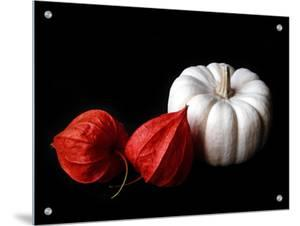 Seed Pod and Pumpkin by I.W.