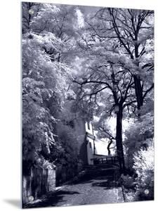 Shadowed Street by I.W.
