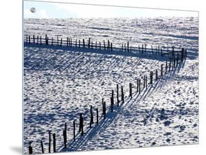 Snowy Pastures with Fence by I.W.