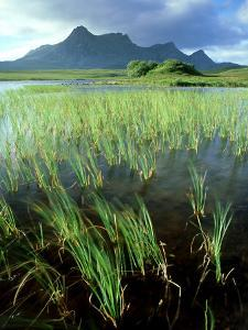 Ben Loyal from Lochan Hakel, Sutherland by Iain Sarjeant