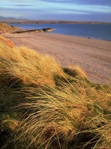 Dunes and Beach, Ross-Shire, Scotland by Iain Sarjeant