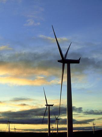 Wind Turbines at Sunset, Caithness, Scotland