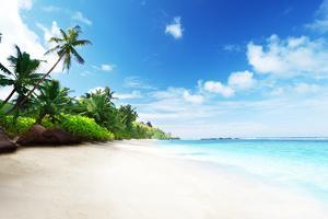 Beach in Sunset Time on Mahe Island in Seychelles by Iakov Kalinin