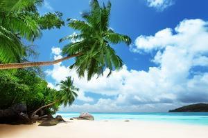 Beach on Mahe Island in Seychelles by Iakov Kalinin