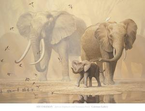 African Elephants and Namaqua Doves by Ian Coleman