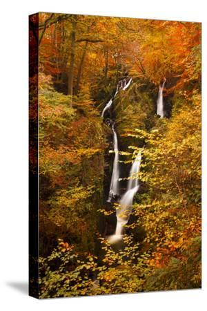 Stock Ghyll Force Waterfall in Autumn, Lake District National Park, Cumbria, England, UK
