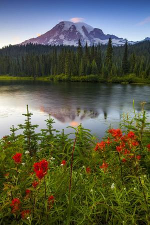 Mount Rainier National Park, Washington: Sunset At Reflection Lakes With Mount Rainier In The Bkgd