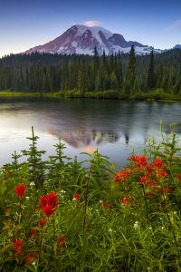 Mount Rainier National Park, Washington: Sunset At Reflection Lakes With Mount Rainier In The Bkgd by Ian Shive