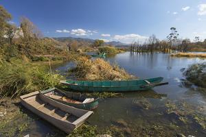 Fishing boats on Erhai Lake, Shuanglang, Yunnan, China, Asia by Ian Trower