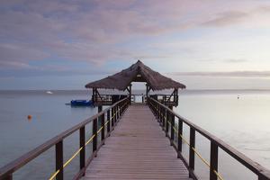 Jetty on Leleuvia Island, Lomaiviti Islands, Fiji by Ian Trower
