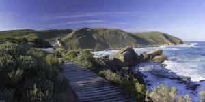 Robberg Nature Reserve, Plettenberg Bay, Western Cape, South Africa, Africa by Ian Trower
