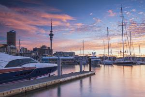 Sky Tower and Viaduct Harbour at Sunset, Auckland, North Island, New Zealand by Ian Trower