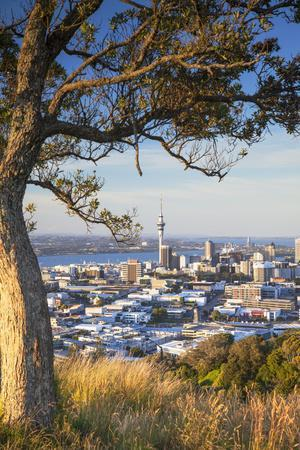 View of Auckland from Mount Eden, Auckland, North Island, New Zealand