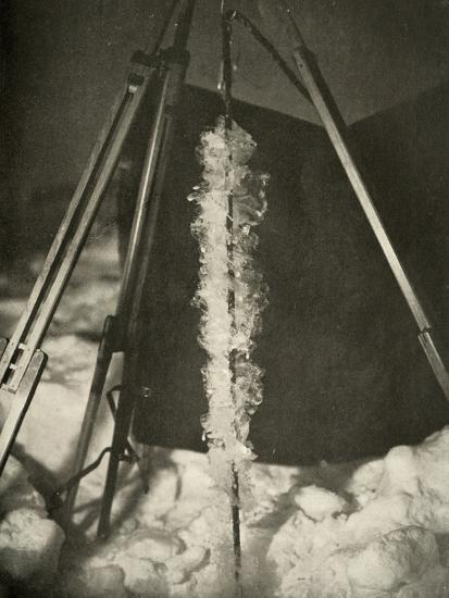 'Ice Crystals Formed on the Line of a Fish Trap', c1908, (1909)-Unknown-Photographic Print