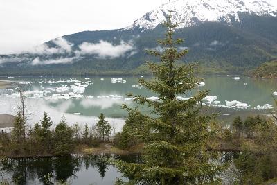 Ice Floes Near Mendenhall Glacier in Juneau, Alaska-Ira Block-Photographic Print