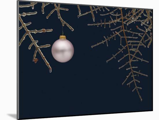 Ice on Branches-Eric Gottschalk-Mounted Photographic Print