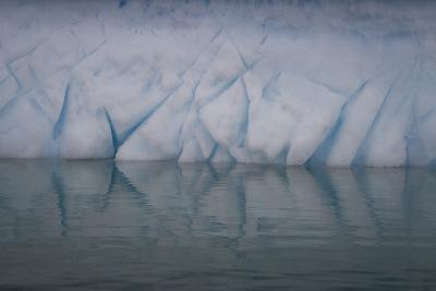 Ice Patterns on Cuverville Island-David Griffin-Photographic Print