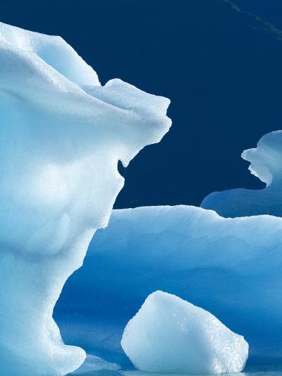 Icebergs Floating in Alsek Lake. Glacier Bay National Park, Ak.-Justin Bailie-Photographic Print