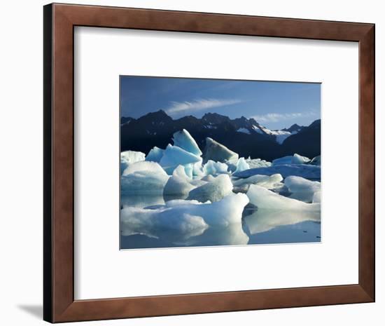 Icebergs Floating in Alsek Lake. Glacier Bay National Park, Ak.-Justin Bailie-Framed Photographic Print