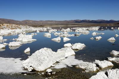 Icebergs Floating on Mono Lake in California, USA-Jill Schneider-Photographic Print