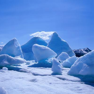 Icebergs in Alsek Lake, Glacier Bay National Park & Preserve, Alaska, USA-Wes Walker-Photographic Print