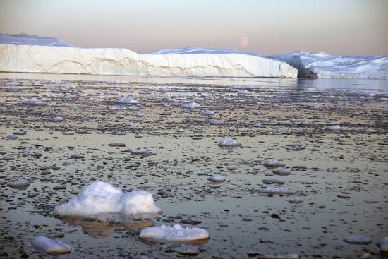 Icebergs in Greenland-Natalie Tepper-Photo