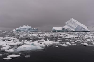 Icebergs in Portal Point, Antarctica-Sergio Pitamitz-Photographic Print