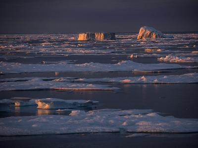 Icebergs Late Afternoon Sunlight-Jay Dickman-Photographic Print