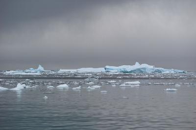 Icebergs Neko Harbour, Antarctica-Albert Knapp-Photographic Print
