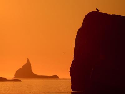 https://imgc.artprintimages.com/img/print/icebergs-silhouetted-at-sunset-disko-bay-greenland-august-2009_u-l-q10oips0.jpg?p=0