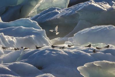 Iceland 6-Art Wolfe-Photographic Print