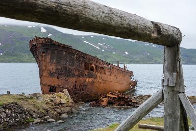 Iceland, Djupavik, Ship Wreck-Catharina Lux-Photographic Print