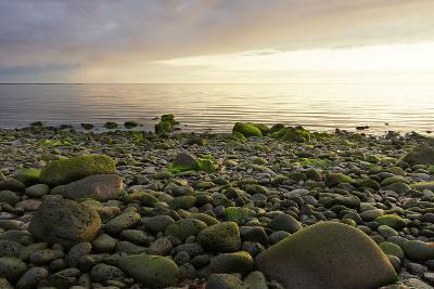 Iceland, Gardskagi, Coast, Stones-Catharina Lux-Photographic Print