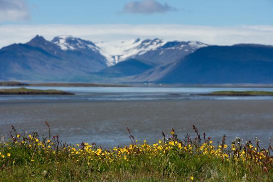 Iceland, Hšfn-Catharina Lux-Photographic Print