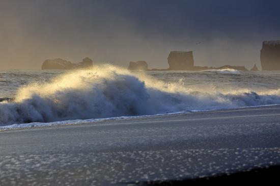 Iceland, Iceland, the South, Mydralur, Vik, Peninsula Dyrholaey-Bernd Rommelt-Photographic Print