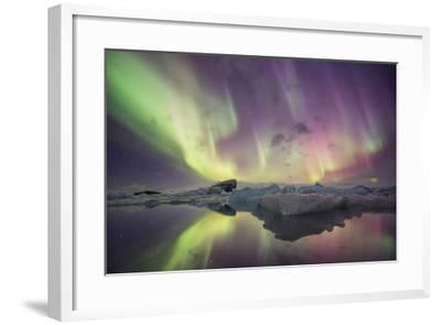 Iceland, Jokulsarlon. Aurora lights reflect in lagoon.-Josh Anon-Framed Photographic Print