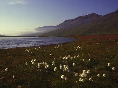 Iceland Landscape-Charles Bowman-Photographic Print